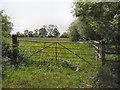 SJ4153 : Farndon Meadows by Daniel