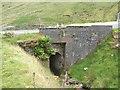 G6986 : Bridge on the Glengesh Pass by John M