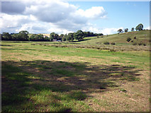 NY6565 : Pasture land beside Tipalt Burn, Greenhead by Karl and Ali