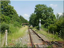 SO6302 : Lydney : looking towards St Mary's Halt from the A48 by Jaggery