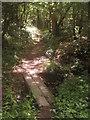 TQ4541 : Footbridge in Tickners Wood by David Anstiss