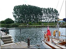 SY9287 : River Frome at Wareham by Nigel Mykura