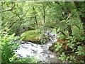 NN1904 : River Goil by John Ferguson
