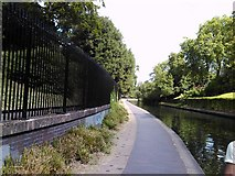 TQ2783 : Weeping willow on the Regent's Canal by Robert Lamb