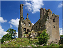 N2925 : Castles of Leinster: Ballycowan, Offaly (2) by Mike Searle