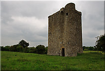 N7049 : Castles of Leinster: Donore, Meath by Mike Searle