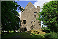 M5064 : Castles of Connacht: Dunmore, Galway (1) by Mike Searle
