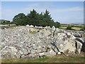 G7154 : Creevykeel Court Tomb by John M