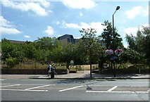 TQ3179 : Waterloo Millennium Park in Baylis Road by Basher Eyre