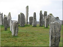 NB2133 : The Callanish Standing Stones by David Purchase