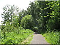 NY6860 : Trackbed of the former Haltwhistle to Alston railway at Featherstone (2) by Mike Quinn