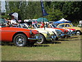 TQ9141 : MG's at Darling Buds Classic Car Show by Oast House Archive
