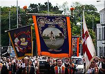 J5081 : 'The Twelfth' parade, Bangor by Rossographer