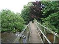 NY7611 : Footbridge across the Eden by David Brown