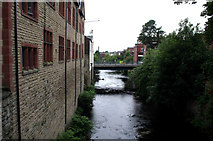 SJ9698 : Stalybridge:  River Tame by Dr Neil Clifton