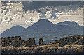 NR6678 : Carraig an Daimh island detail by Dutyhog