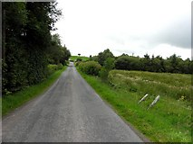 H5575 : Fingrean Road by Kenneth  Allen