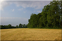 TQ4457 : Field near Cudham Grange by Ian Capper