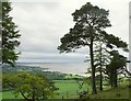 SD4577 : Looking South from Arnside Knot by Gary Rogers
