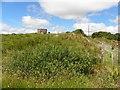 C0710 : Kilpheak Townland by Kenneth  Allen