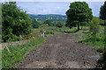 SN4859 : Line of old railway by Nigel Brown