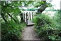 TL0652 : Small bridge by Barry Ephgrave