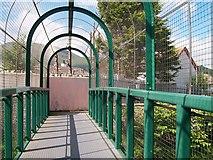 J3731 : Footbridge across the River Burren by Eric Jones
