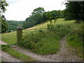 SK3462 : Track junction between Overton Hall and Ashover by Andrew Hill