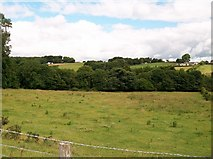 J3532 : View across the Shimna Valley towards the Bryansford Road by Eric Jones