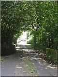 SE1407 : Swan Bank Lane - Dunford Road by Betty Longbottom