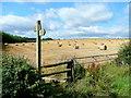 SO6524 : Harvested barley crop by Jonathan Billinger