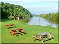SO8425 : River Severn at Wainlode Hill by Jonathan Billinger