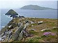 V3098 : Dunmore Head by Eileen Henderson