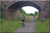 SK1462 : Tissington Trail south of Parsley Hay by Stephen McKay