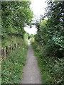 NZ1765 : North Walbottle Waggonway, between Blucher & Lemington by Andrew Curtis