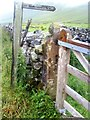 SD6886 : Footpath to Underwood from Barbondale by Roger Templeman