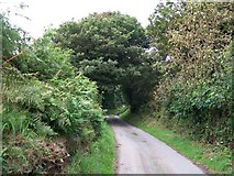 SH3137 : Country lane at the southern end of Coed Bryn Hendre by Eric Jones