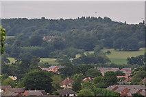SS9612 : Tiverton : Tiverton Scenery by Lewis Clarke