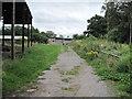 SJ4869 : Footpath to Railway by David Quinn