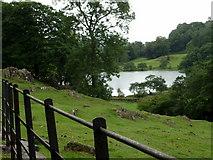 NY3404 : Loughrigg Tarn, Cumbria by Graham Hogg