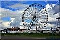 NZ5333 : The Big Wheel, Hartlepool Headland by Paul Buckingham