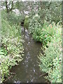 SE6077 : Stream - off private driveway to Ampleforth Abbey by Betty Longbottom
