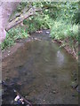 SE6077 : Stream - off private driveway to Ambleforth Abbey by Betty Longbottom