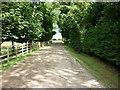 SE7347 : A walk from Wilberfoss #42 by Ian S