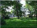 NU1734 : Bamburgh village green by Oliver Dixon