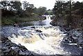 NY9027 : Low Force,  On the River Tees by Derek Voller