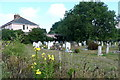 SZ5492 : Wootton Cemetery by Graham Horn