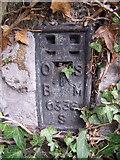 SH5873 : Flush bracket S0336 at Garth Gardens, Bangor by Meirion