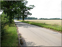 TG1301 : View south-west along Ketteringham Road by Evelyn Simak