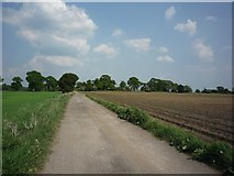 SE6548 : Bridleway from Langwith Stray by DS Pugh
